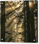 Sunburst Rainbow Acrylic Print