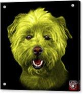 Yellow West Highland Terrier Mix - 8674 - Bb Acrylic Print