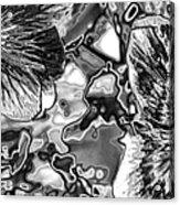 Abstract  Acrylic Print