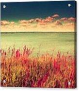 Great Landscape Acrylic Print