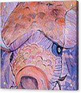 20. Meris Van De Grift Acrylic Print