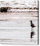 Private Beach Bastendorff Acrylic Print