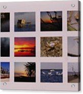 2008 Calendar Back Of Gulf Views Edition Acrylic Print