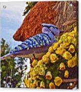 2016rose Parade Rp005 Acrylic Print