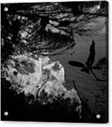 2017 Macchia Mediterranea Del Malpasso Acrylic Print