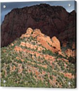 Zion National Park In Autumn Acrylic Print