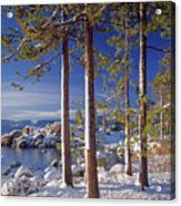 211257 Snow On Tree Sides Lake Tahoe Acrylic Print