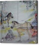 Here Come The Equines Album  Acrylic Print