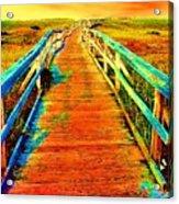 2355z  Wooden  Walkway Acrylic Print