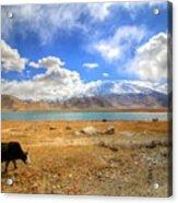 Xinjiang Province China Acrylic Print