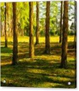 Nature Art Landscape Acrylic Print