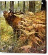 nature Rien Poortvliet Acrylic Print