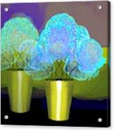 2701 Blue Flowers 2018 V Acrylic Print