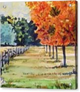 Watercolor Acrylic Print