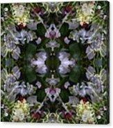 Wormhole Mandala Acrylic Print