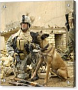 A Dog Handler And His Military Working Acrylic Print
