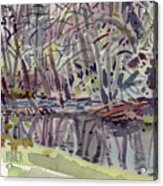 Alder Creek Acrylic Print
