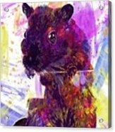 Animal Attractive Beautiful Brown  Acrylic Print