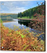 Autumn Derwent Reservoir Derbyshire Peak District Acrylic Print