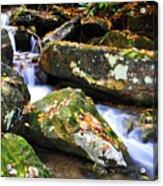 Autumn Mountain Stream Acrylic Print