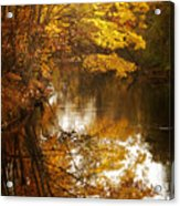 Autumn Reflected Acrylic Print