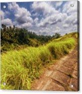 Bali Landscape Acrylic Print