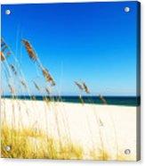 Beautiful Beach Acrylic Print