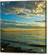Birch Bay Acrylic Print