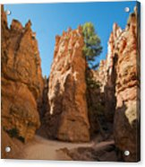 Spires On Navajo Trail Acrylic Print