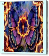 Celestial Butterfly Acrylic Print