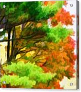 3 Colors Of The Nature 1 Acrylic Print