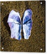 Fallen Butterfly Acrylic Print