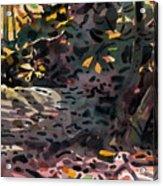 Fallen Oak Acrylic Print