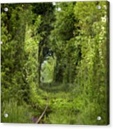 Famous Tunnel Of Love Location Acrylic Print