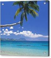 Fiji, Kadavu Island Acrylic Print