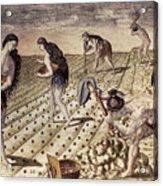 Florida Native Americans, 1591 Acrylic Print