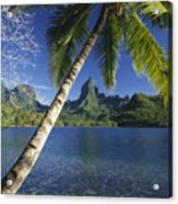 French Polynesia, Moorea Acrylic Print
