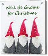 Christmas Gnomes Acrylic Print