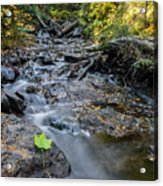 Jacob's Creek Rapids Acrylic Print