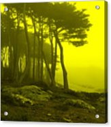 Lands' End Acrylic Print