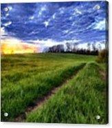 Landscape Painting Acrylic Acrylic Print