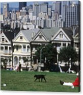 Man And Dog In Alamo Square In San Francisco Acrylic Print