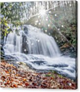 North Carolina - Dupont State Forest - Waterfall Collection Acrylic Print