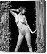 Nude Art Photography By Mary Bassett Acrylic Print