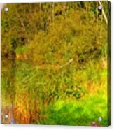 Q Landscape Acrylic Print