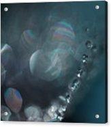 Refreshed Acrylic Print by Bonnie Bruno