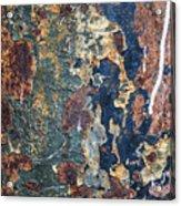 Rust Closeup  Acrylic Print