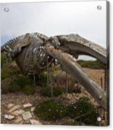 Seymour Marine Discovery Center Santa Cruz Acrylic Print