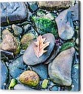 Small Rocks On The Beach Acrylic Print