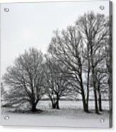Snow On Epsom Downs Surrey Uk Acrylic Print
